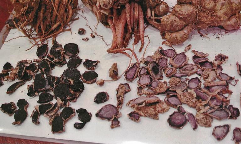 黒ガリンガル(クロガリンダ)サプリメントの原料となる黒ガリンガルの写真